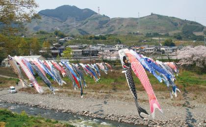 九度山町(くどやまちょう)|WAKAYAMA LIFE -和歌山移住ポータル ...
