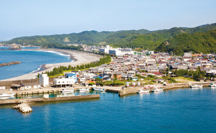 白浜町(しらはまちょう)|WAKAYAMA LIFE -和歌山移住ポータル ...