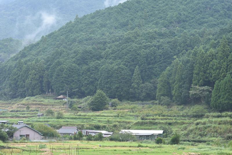 山が広がる那智勝浦町